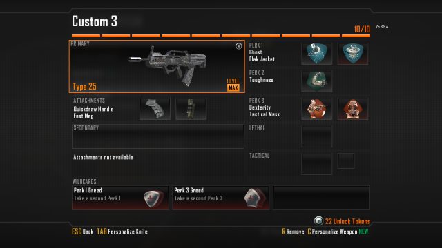 Type 25 Best Class Setup in Call of Duty Black Ops 2