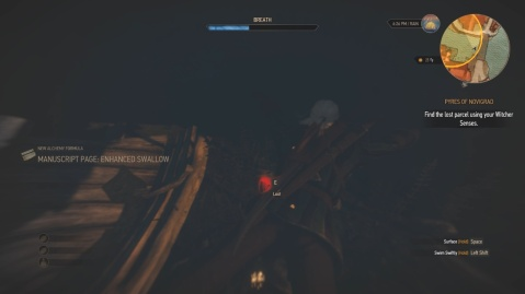 Location of the lost parcel in pyres of Novigrad in Witcher 3 Wild Hunt.