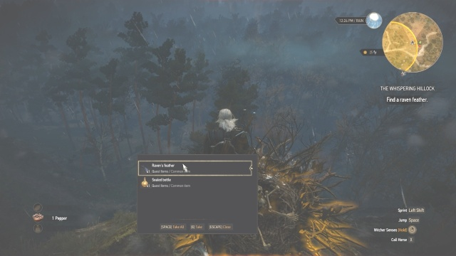 Raven feathers location in the Whispering Willock in Witcher 3 Wild Hunt.