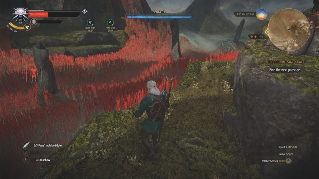 Find the next passage in Throughout Time and Space in Witcher 3 Wild Hunt.