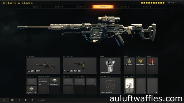 Auger DMR Tactical Rifle Best Class Setup Call of Duty Black Ops 4